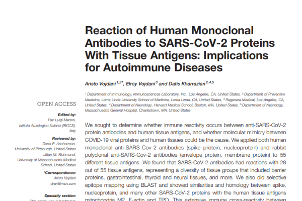 Reaction of Human Monoclonal Antibodies to SARS-CoV-2 Proteins With Tissue Antigens: Implications for Autoimmune Diseases