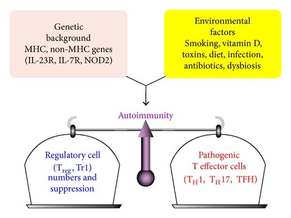Immune reactivities to peanut proteins, agglutinins, and oleosins